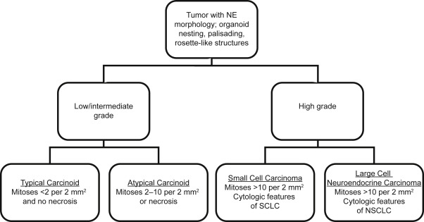 neuroendocrine cancer type
