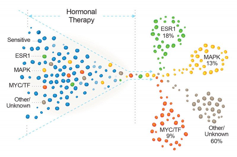 cancer hormonal changes