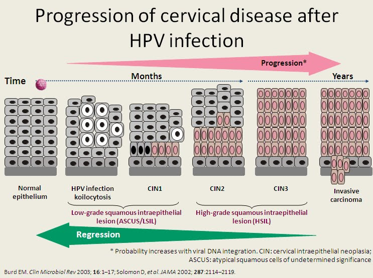human papillomavirus infection and cancer