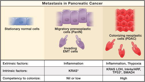 metastatic cancer and pancreatic)