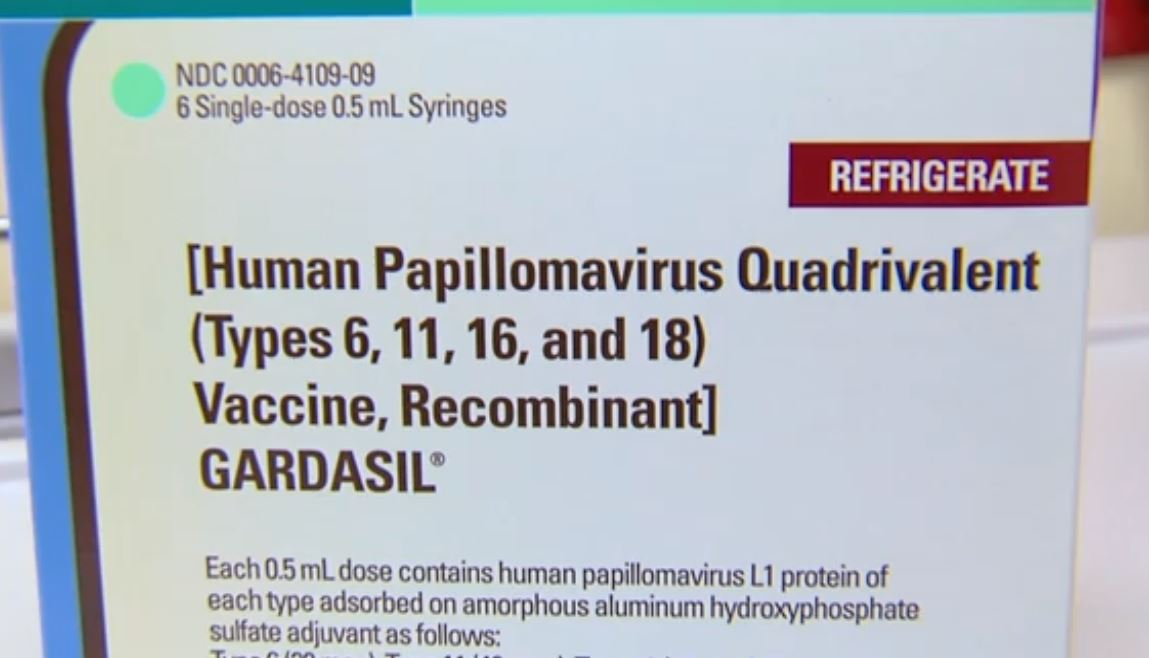 human papillomavirus vaccine for older adults papillomavirus em caes