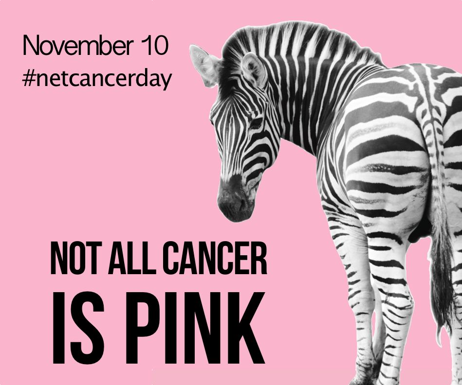 neuroendocrine cancer zebra)