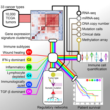 Next Generation Sequencing in Cancer Research, Volume 2: Wei Wu · | Books Express
