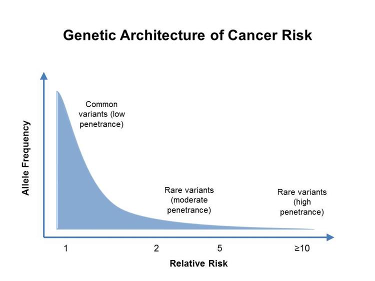 familial cancer genetics)