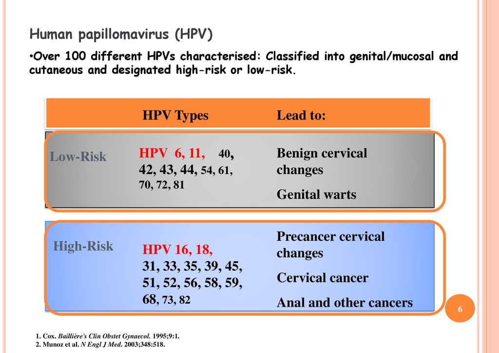 hpv virus high risk