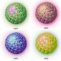 Can hpv cause head and neck cancer - Înțelesul