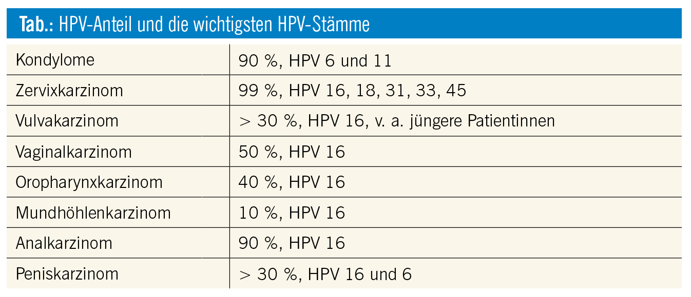 hpv high risk infektion