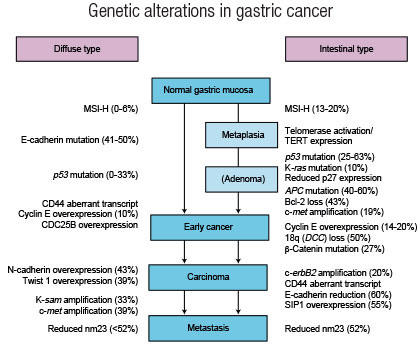 cancer gastric tipuri
