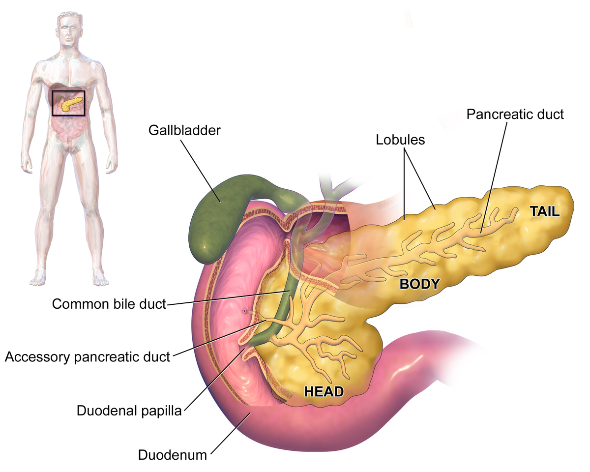 chist duodenal