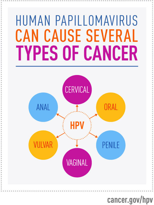 does hpv cause womb cancer