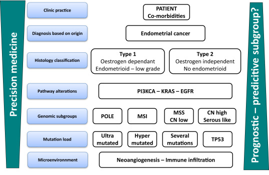 endometrial cancer hormone therapy