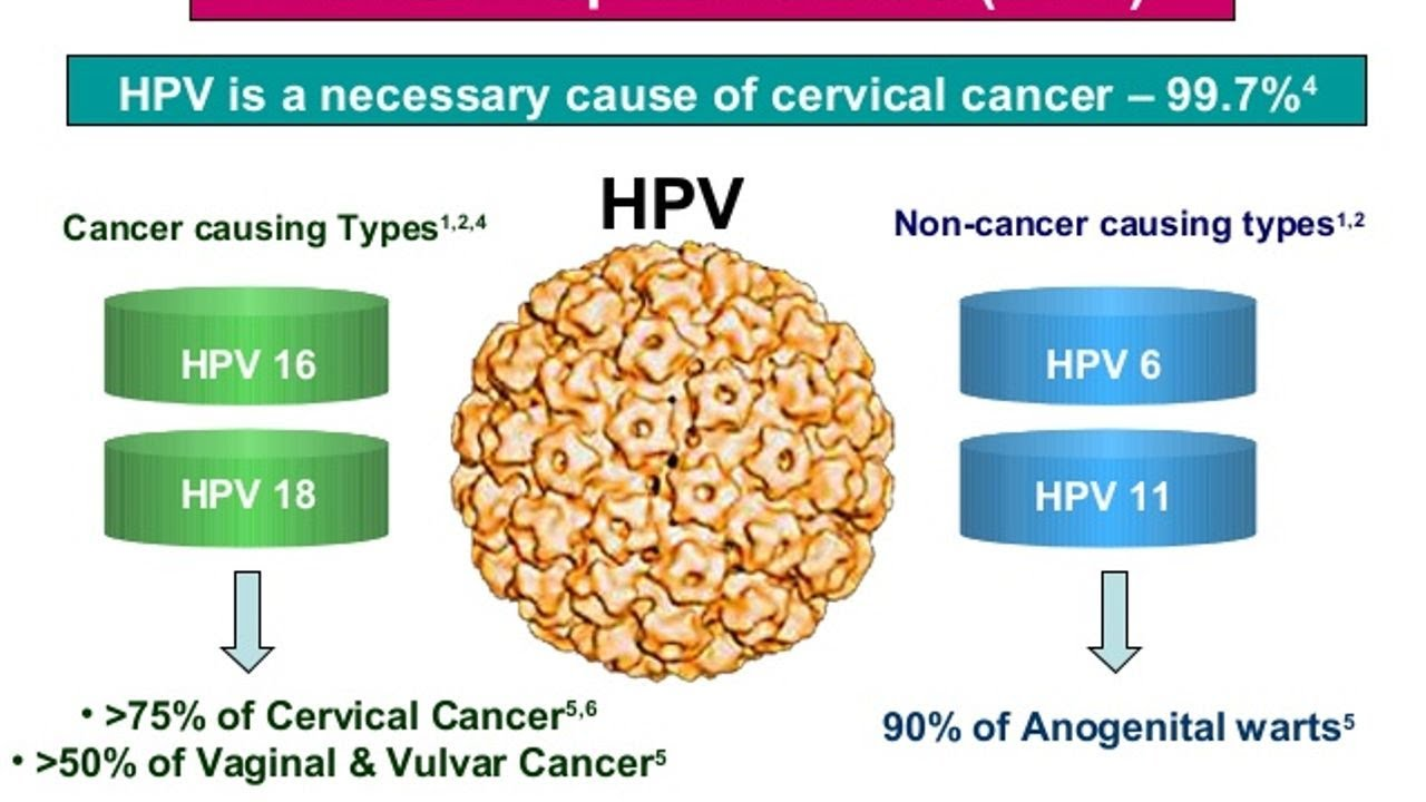 hpv cause of cancer)
