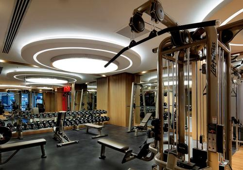 papillon zeugma gym