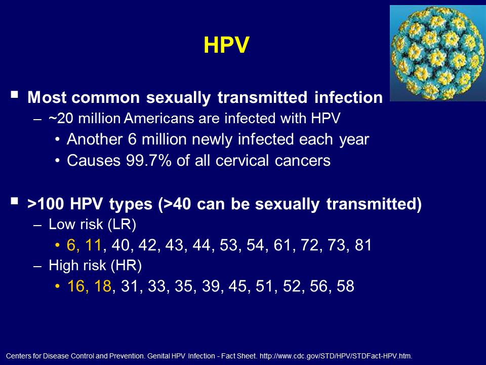 hpv high risk who)