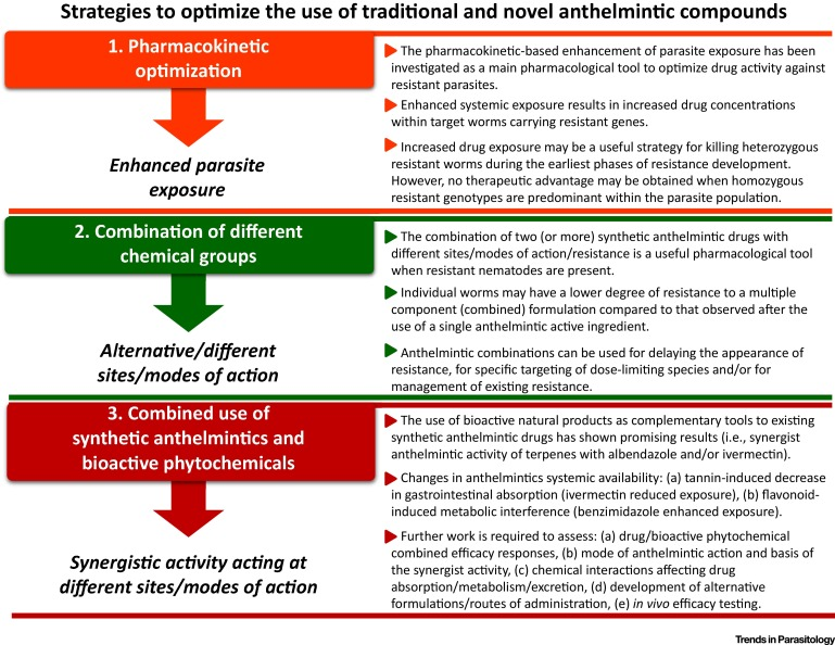 anthelmintic definition with example