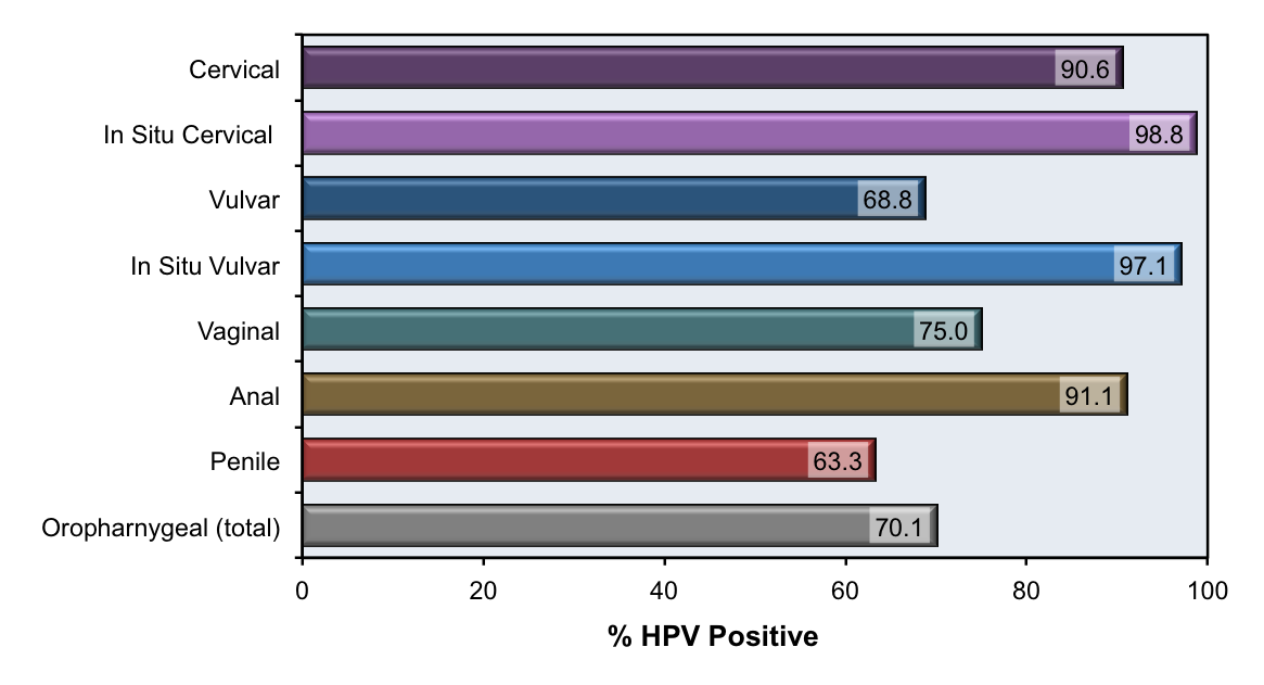 Hpv meaning in arabic - tahicromatic