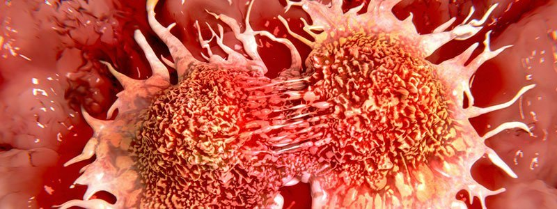 does hpv cause liver cancer