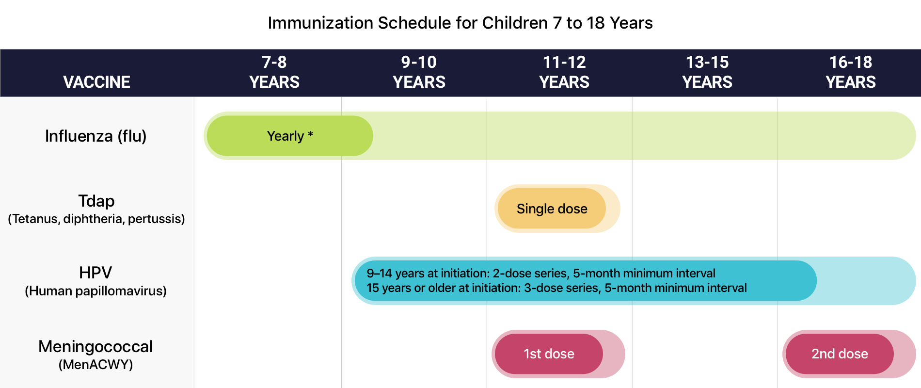 human papilloma vaccine schedule