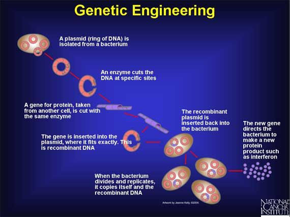 Cancer human genetic engineering
