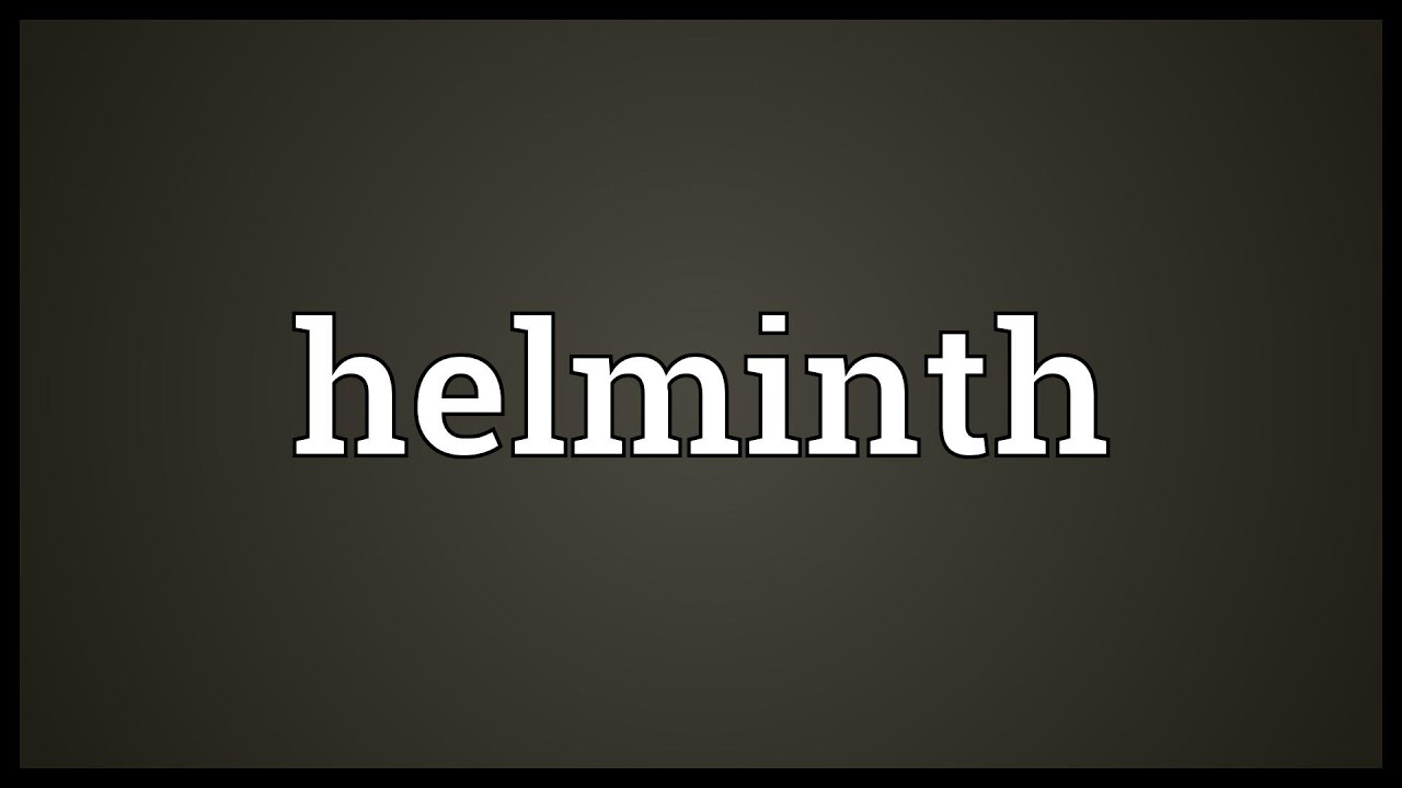 helminth latin meaning