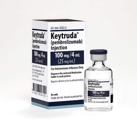 endometrial cancer keytruda
