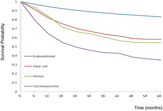 endometrial cancer mortality)