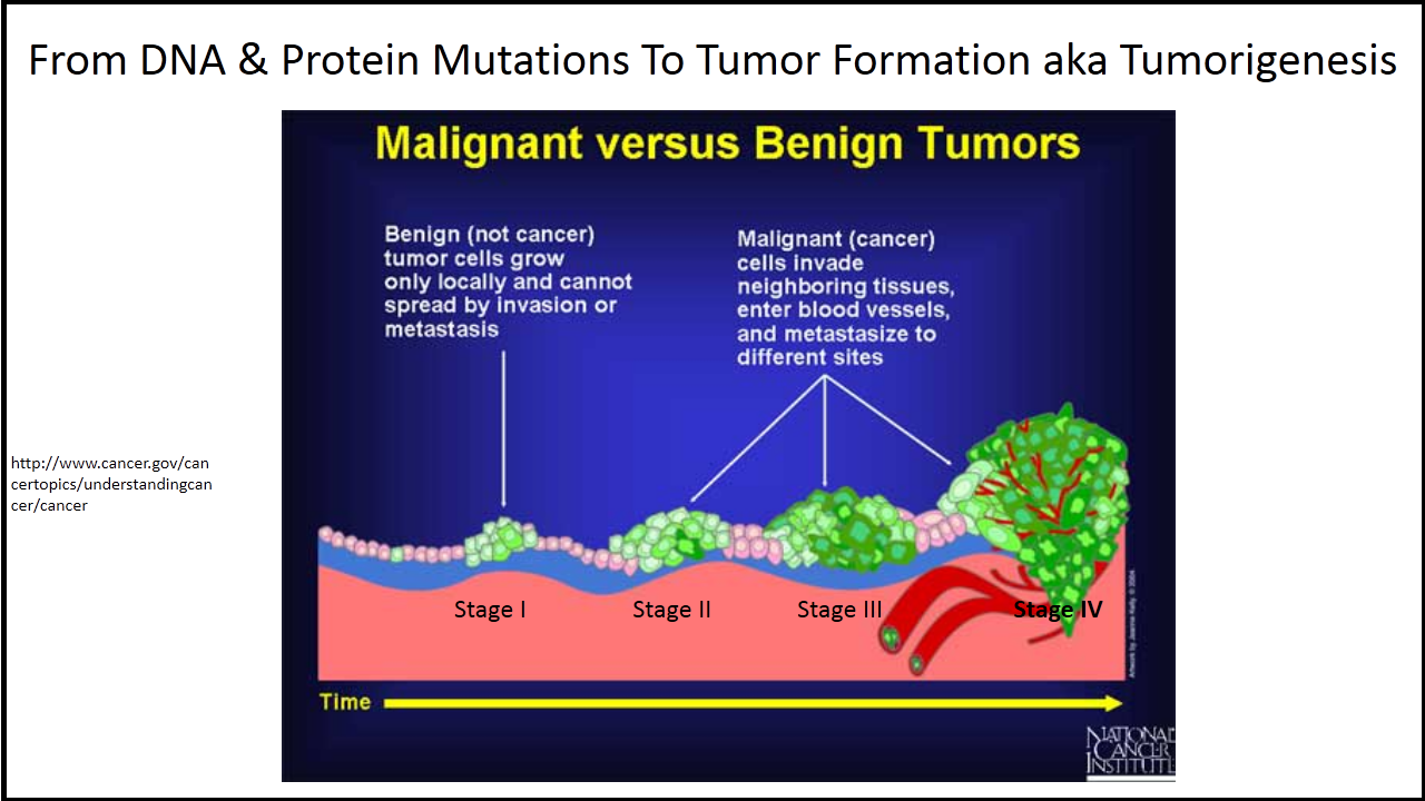 benign cancer and malignant tumor