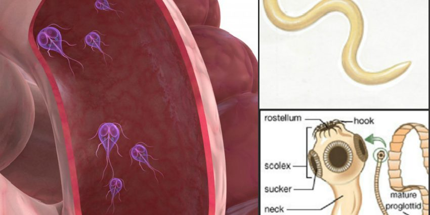 mouth warts on tongue hiv and bowel cancer