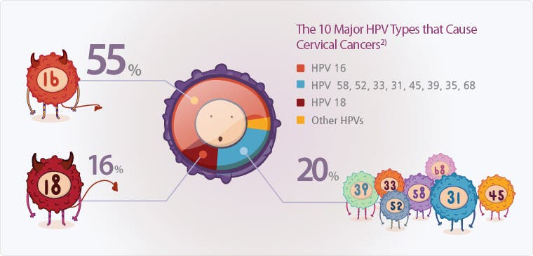 Hpv high risk strains treatment. Înțelesul