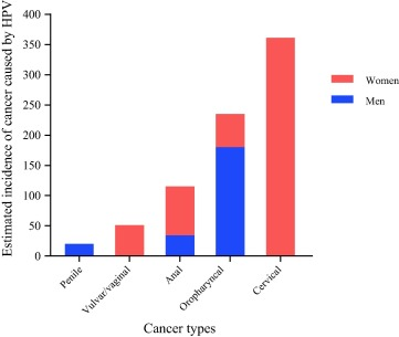 hpv male cancer rates)