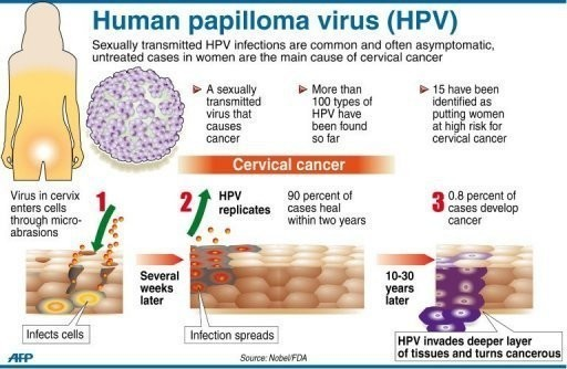 hpv virus cancer strains)