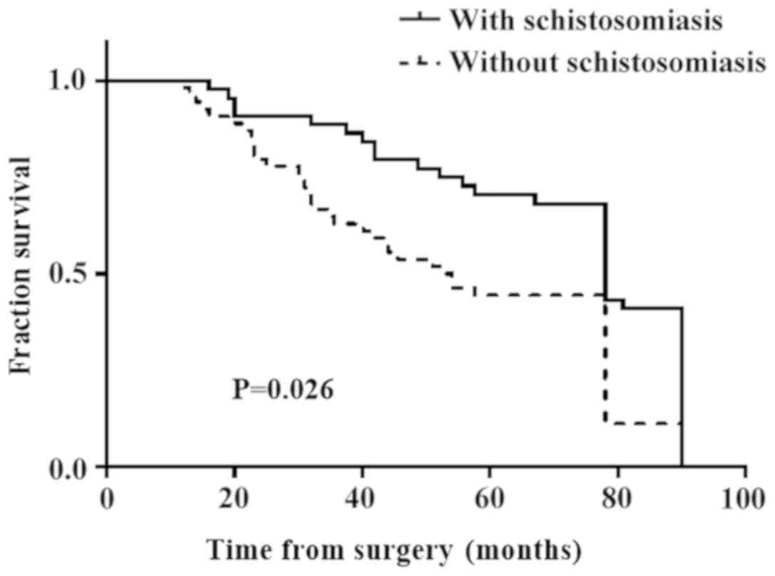 rectosigmoid cancer survival rate
