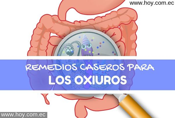 Parasitos intestinales oxiuros tratamiento natural