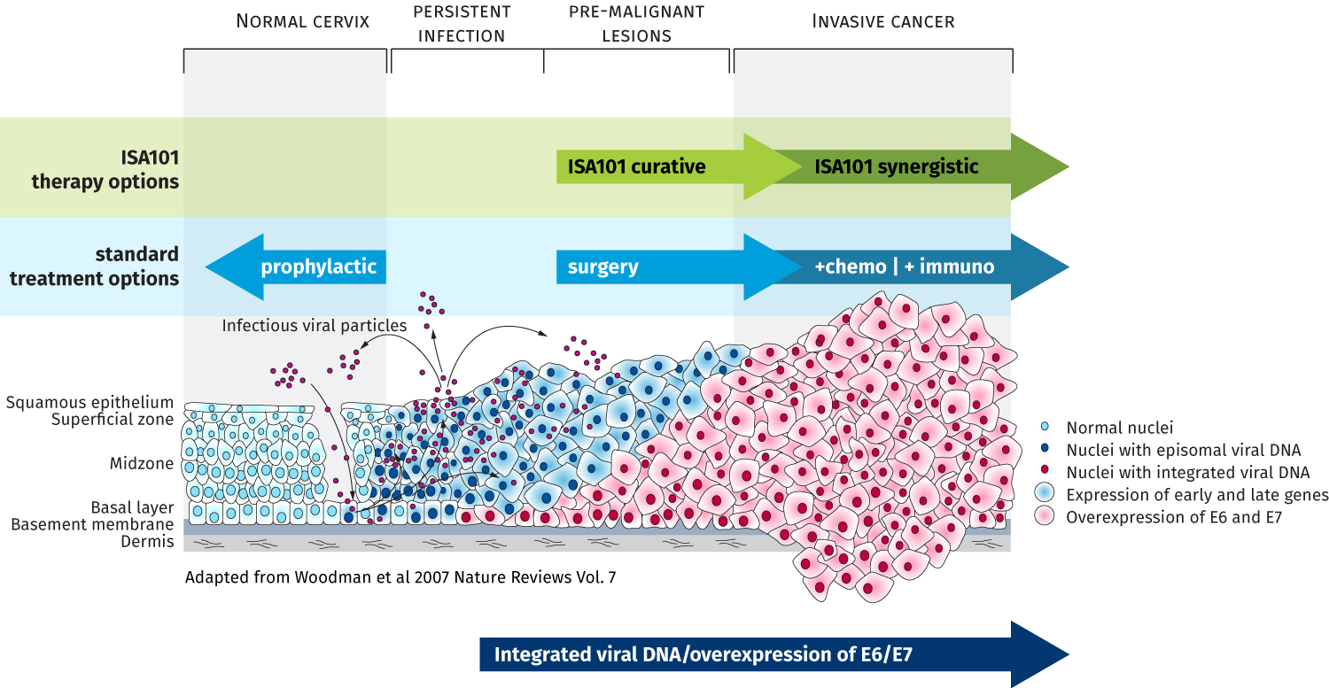 hpv and therapy)