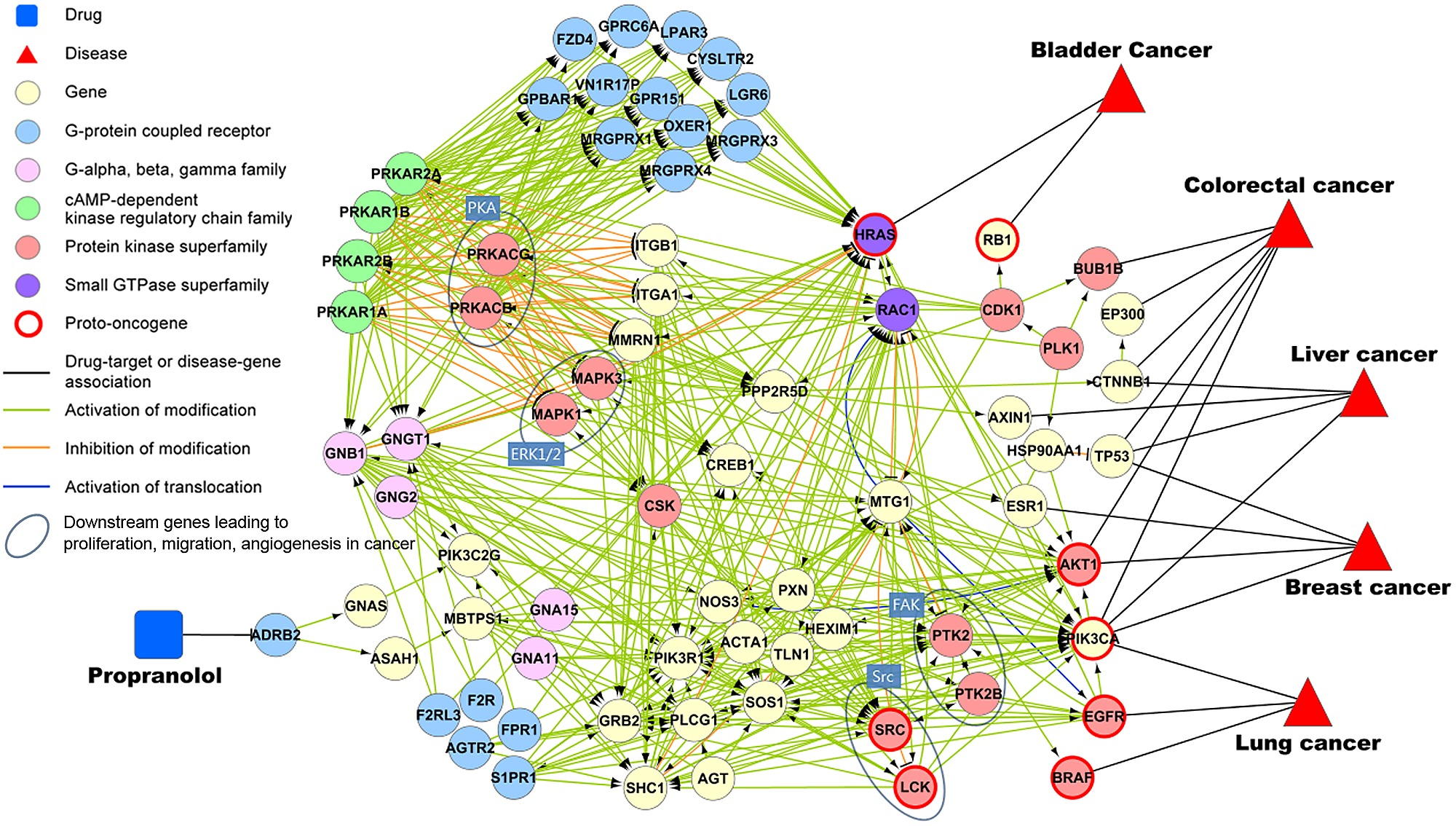 cancer genetic network)
