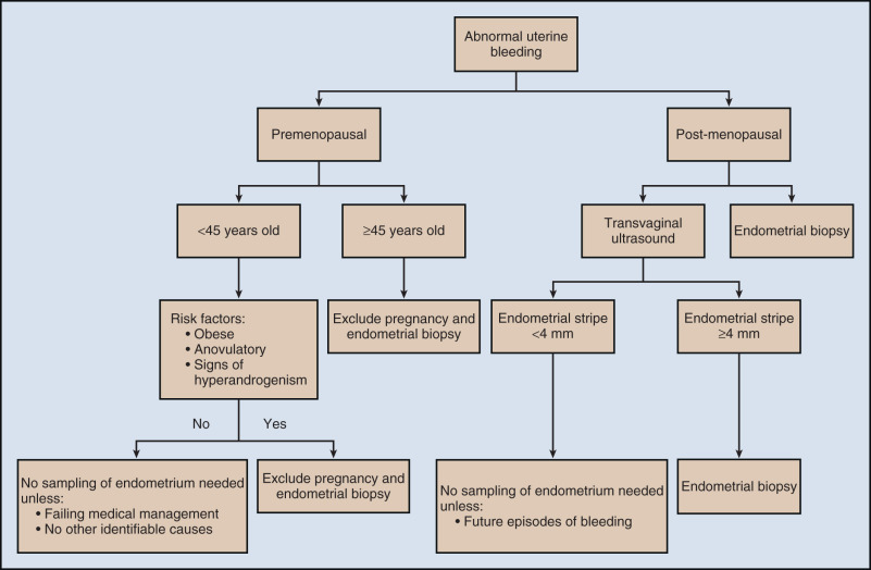 endometrial cancer etiology)