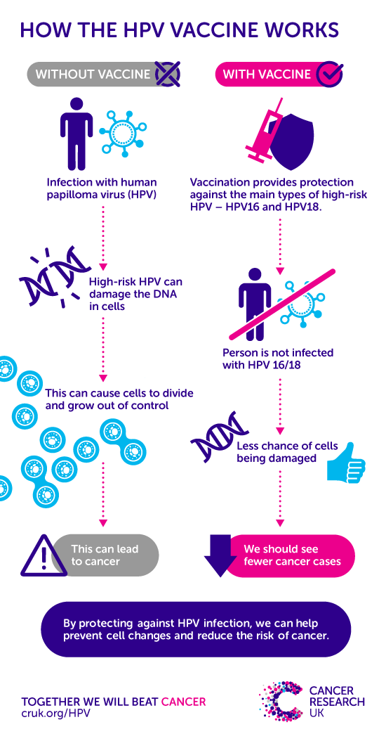 hpv types and risks)