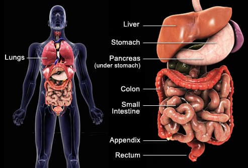 Cancerul pancreatic Neuroendocrine cancer that has spread to the liver